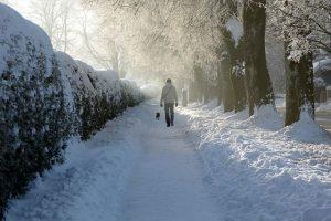Winterspaziergang in Senmotic Storm Barfußschuhen